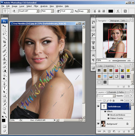 Adobe Photoshop CS8